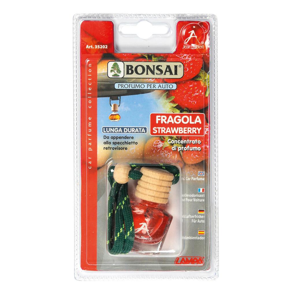 Bonsai Classic - A - Fragola