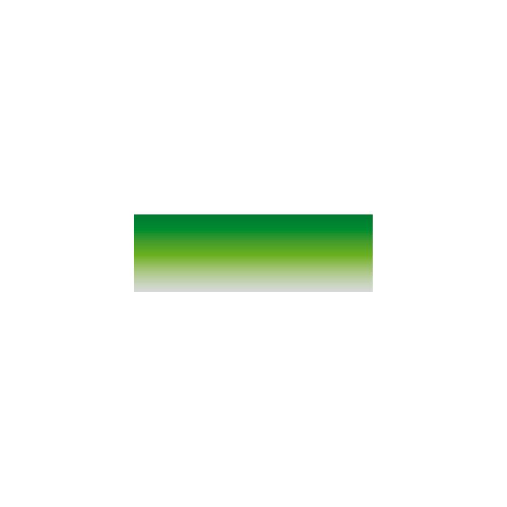 Top Line Standard - 20x150 cm - Verde
