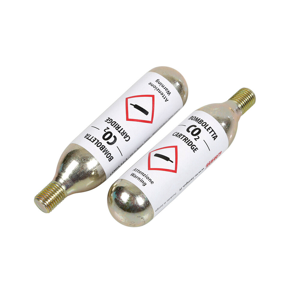 2 bombolette di ricambio CO2