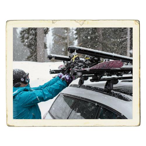 FatCat 6 Evo Black, ski carrier 10